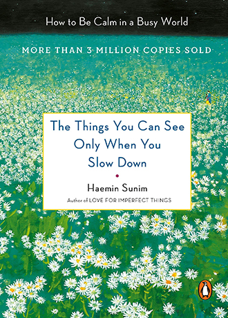 <US cover of <The Things You Can See Only When You Slow Down: How to Be Calm in a Busy World>